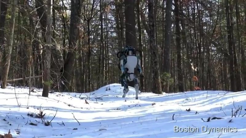История робота-кладовщика