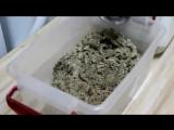 Как приготовить приманку на Карася, Карпа, Леща