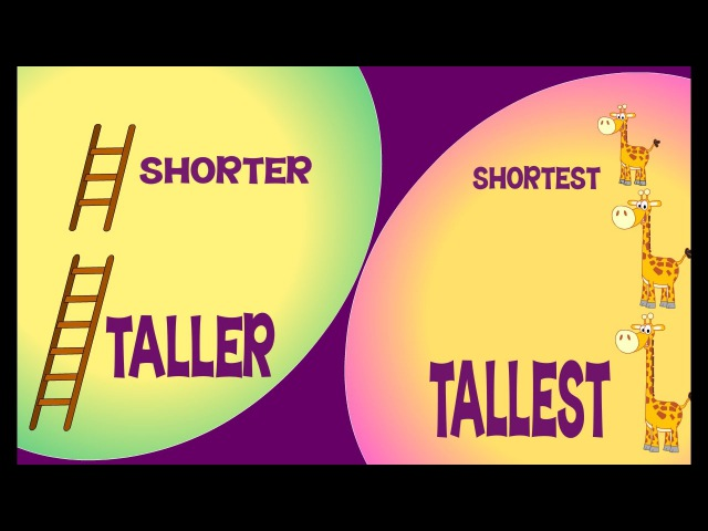 Taller and Shorter Tallest and Shortest | Comparison for Kids | Learn Pre-School Concepts