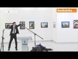 Российский посол в Турции скончался после нападения в Анкаре