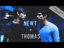 ▶ newt thomas || dna
