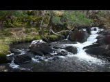 1 Hour Nature Sounds Relaxing Meditation-Calming Study Aid W/O Birdsong-Relaxation by Johnnie Lawson