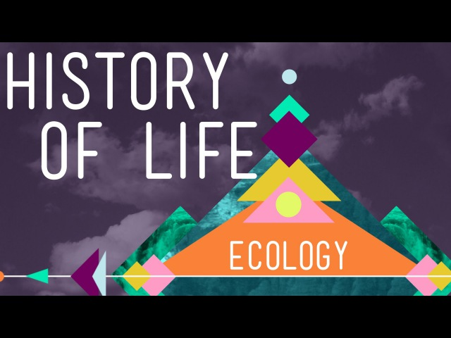 The History of Life on Earth - Crash Course Ecology 1