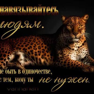 Галина Сурова