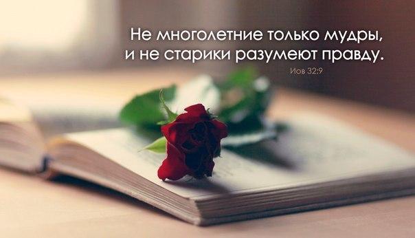 Премудрость светла и неувядающа, и легко созерцается любящими ее, и об