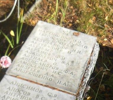 Мемориальная плита на могиле около Койриноя