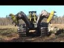 Самые опасные и удивительные машины для заготовки леса
