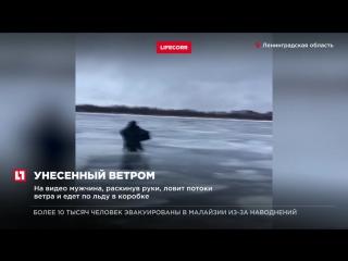 Рыбака, возвращающегося домой, сдуло ветром на Финском заливе