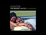 Aligator feat Daniel Kandi The Perfect Match ( Aligator Chill Out Mix)