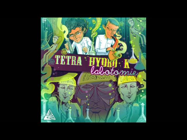 Tetra Hydro K Exode feat Panda Dub Labotomie