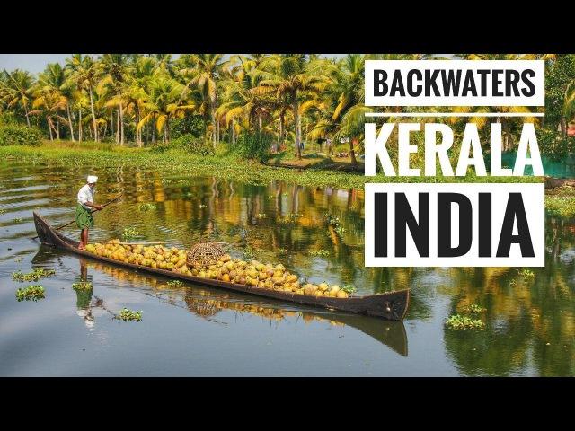 Backwaters, Прогулки по каналам экскурсия (Индия, Керала)
