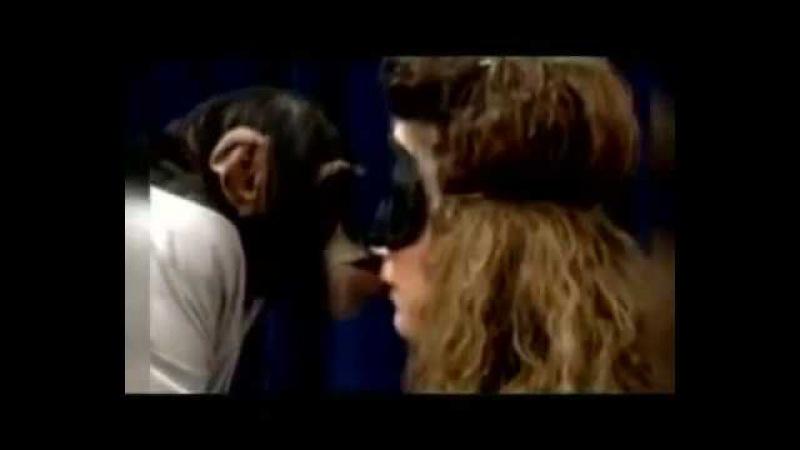 Целуюсь с обезьянкой|||Я тебя зацелую♥♣♠Обезьяна***