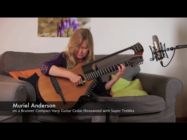 Why worry by Muriel Anderson on a Brunner Compact Harp Guitar