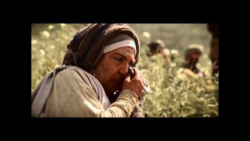 Tак как вы сделали это одному из сих братьев Евангелие от Матфея 25 31 46