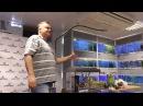 Tetra Мастер класс по запуску аквариума с Дмитрием Кашкаровым и Раисой Зубаревой