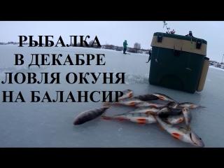 Рыбалка в декабре ловля окуня на балансир