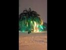 Снег и пальмы в Сочи