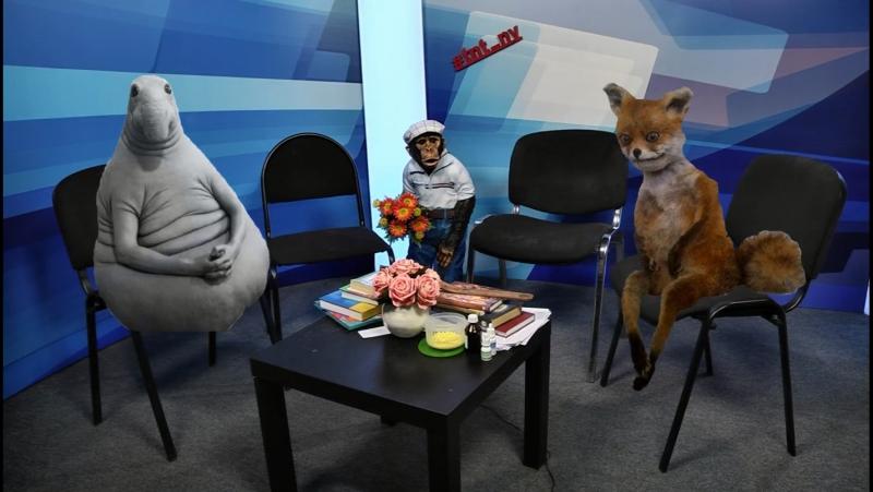 Работа кипит Прямой эфир ТНТ-Нижневартовск 14.03.17 tnt_nv_live