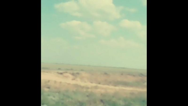 ауылыма келе жатрмн)Тайпак