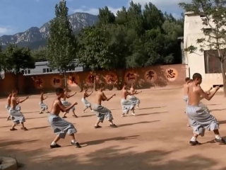 Traditional shaolin kung fu training in china