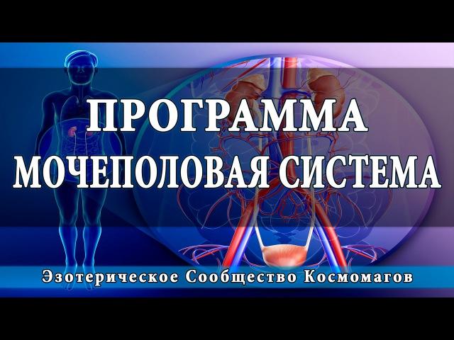Космоэнергетика | Программа оздоровления мочеполовой системы [Школа Космомагов]