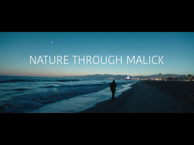 NATURE THROUGH MALICK