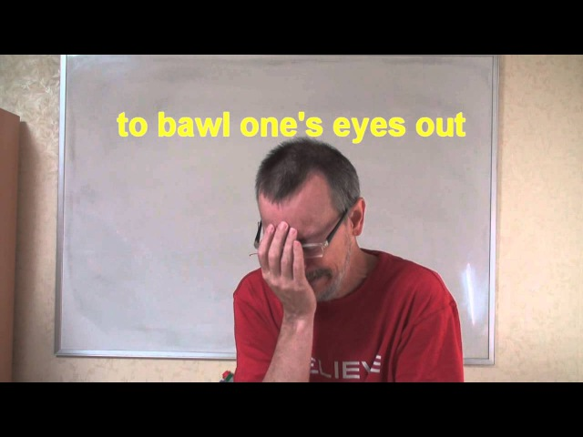 0272 - bawling one's eyes out / выплакать глаза - Daily Easy English Expression
