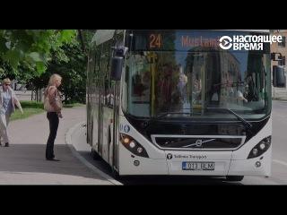 Бесплатный городской транспорт в Таллине: как это работает