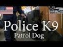 Kedo, Police K9 Patrol Dog