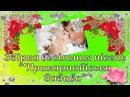 Збірка весільних пісень ''Прикарпатська Забава'', Поцілунок