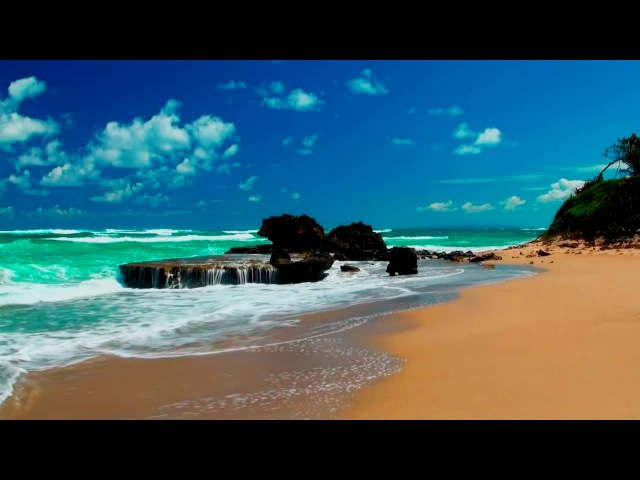 ✧ Relaxing Beach Calming Seas • Planet Earth Amazing Nature Scenery • 3 HOURS • 1080p HD ✧