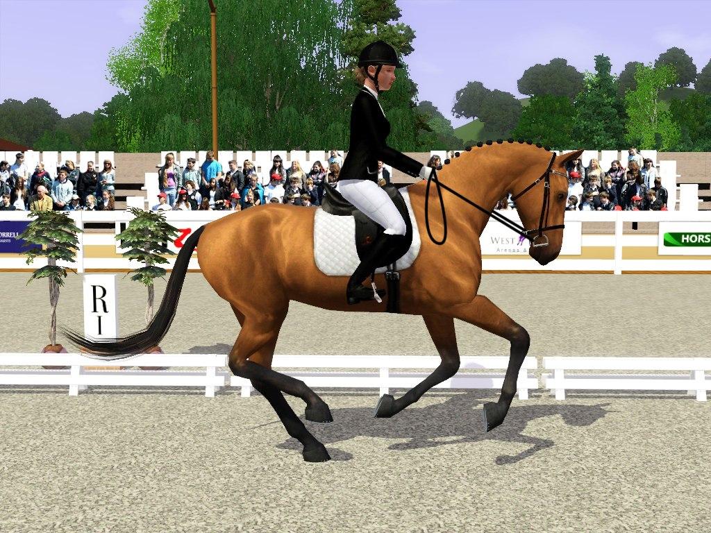 Регистрация лошадей в RHF 2 - Страница 7 ZH0Wf2mxOb4