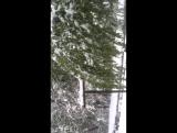 20.04.2017 г.Бендеры . Приднестровье