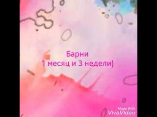 ilona.opolskaya video