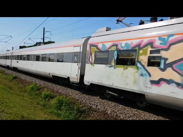 Граффити ЭКР1-001 Тарпан