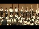 Jesus bleibet meine freude choral aus der kantate BWV 147 - J. S. Bach