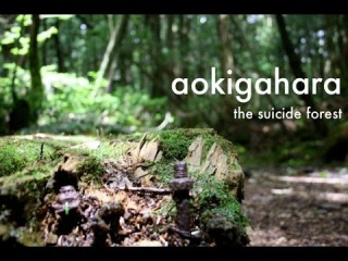 Аокигахара: Лес призраков в Японии (Aokigahara: Suicide Forest in Japan) Новинка 2016