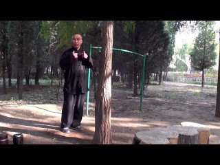 泰拳踢香蕉树是很牛 但是八极拳高手徒手击打树干 泰拳手不敢做!  搏击&#2