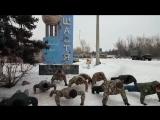 ЛУГАНСЬКА ОБЛАСНА СПІЛКА ВЕТЕРАНІВ АТО провела заходи на підтримку ветеранського руху в Україні