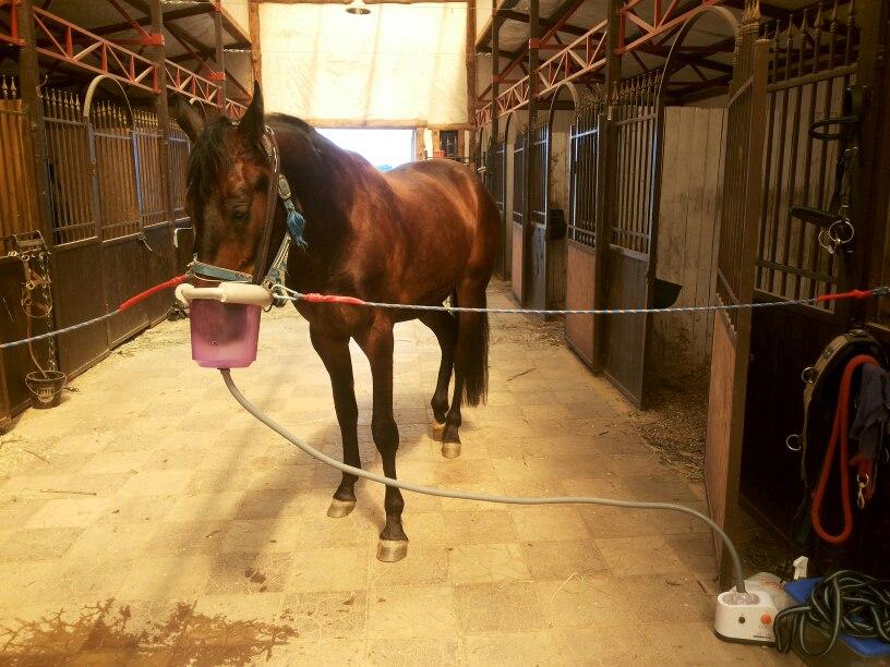Ингалятор для лошади 105
