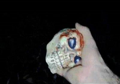 череп 2