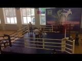 Чемпионат и Первенство Белгородской области по кикбоксингу в раздели фулл контакт с лоу-киком