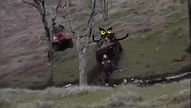 Wrooom wroooom motherfucker