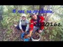По грибы с племянником Грибы в Чувашии Подубовики лисички подосиновики