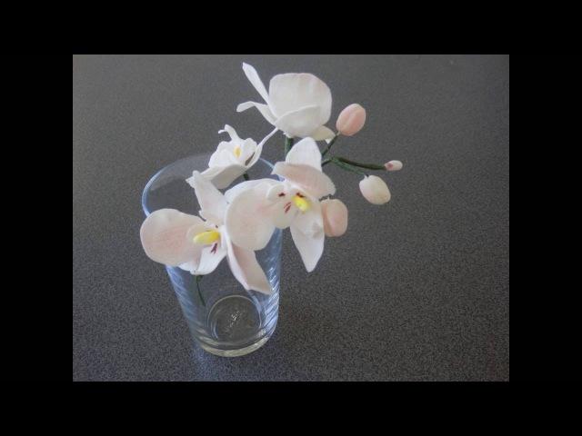 сахарные орхидеи/Орхидеи из мастики делаем сами/Orchideen aus Blütenpaste