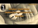 ВОЛЬФГАНГ АМАДЕЙ МОЦАРТ - Симфония №40 соль минор, K.550 - I. Allegro Molto