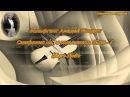 ВОЛЬФГАНГ АМАДЕЙ МОЦАРТ - Симфония №40 соль минор, K.550 - I. Allegro Molto ♪ Mozart ♪