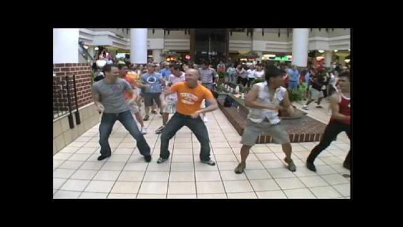 Mamma Mia Flash Mob Performance DC