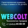 Конверсия сайтов.Блог компании WEBCOLT.RU