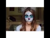 Cheshire Cat|Amymarie